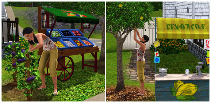 Sims  Food Stands In Build